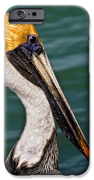 Pelican Profile No.40 IPhone 6s Case by Mark Myhaver