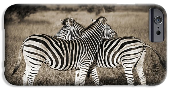 Perfect Zebras IPhone 6s Case by Delphimages Photo Creations