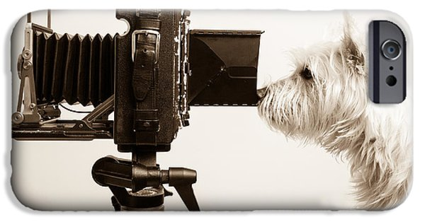 Dog iPhone 6s Case - Pho Dog Grapher by Edward Fielding
