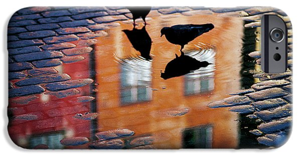 Pigeon iPhone 6s Case - Pigeons by Allan Wallberg