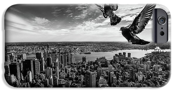 Pigeon iPhone 6s Case - Pigeons On The Empire State Building by