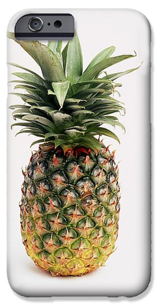 Pineapple IPhone 6s Case by Ron Nickel