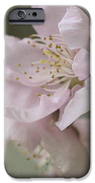 Pink Is The Color Of Happiness IPhone 6s Case by Linda Lees