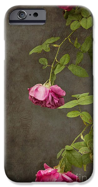 Flowers iPhone 6s Case - Pink On Gray by K Hines