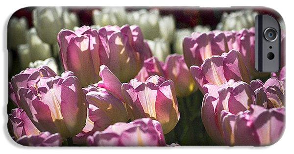 IPhone 6s Case featuring the photograph Pink Tulips by Yulia Kazansky