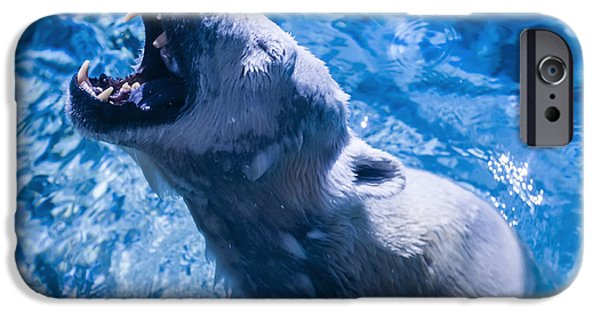 Polar Bear IPhone 6s Case