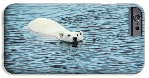 Polar Bear Swimming IPhone 6s Case by Peter J. Raymond