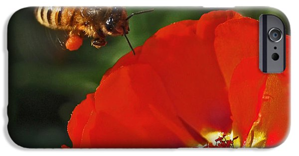 Pollination IPhone 6s Case by Rona Black