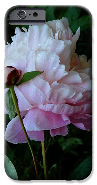 Rain-soaked Peonies IPhone 6s Case by Rona Black