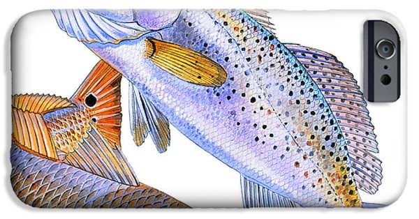 Drum iPhone 6s Case - Redfish Trout by Carey Chen