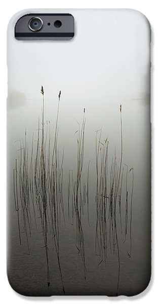 Simple iPhone 6s Case - Reeds In The Mist by David Ahern