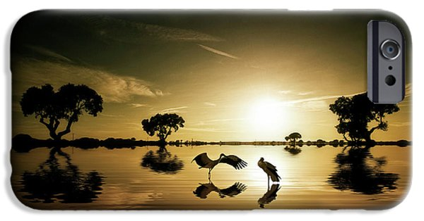 Reflections In The Lake IPhone 6s Case