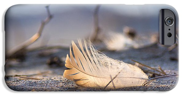 Remnants Of Icarus IPhone 6s Case by Bill Pevlor