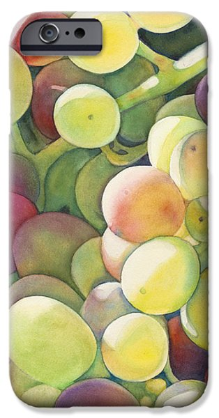 Ripening IPhone 6s Case by Sandy Haight