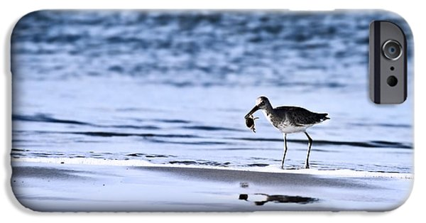 Sandpiper IPhone 6s Case by Stephanie Frey