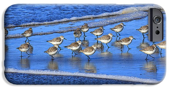 Sandpiper Symmetry IPhone 6s Case by Robert Bynum