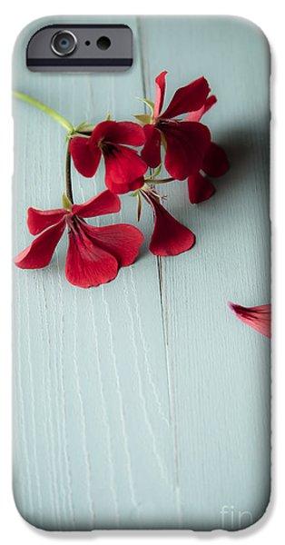 Scarlet iPhone 6s Case - Scarlet Geranium by Jan Bickerton