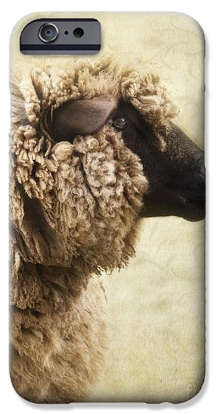 Side Face Of A Sheep IPhone 6s Case by Priska Wettstein