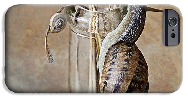 Snails IPhone 6s Case by Nailia Schwarz