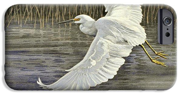 Snowy Egret IPhone 6s Case