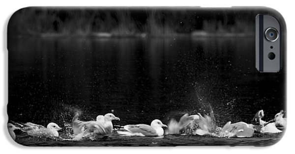 IPhone 6s Case featuring the photograph Splashing Seagulls by Yulia Kazansky