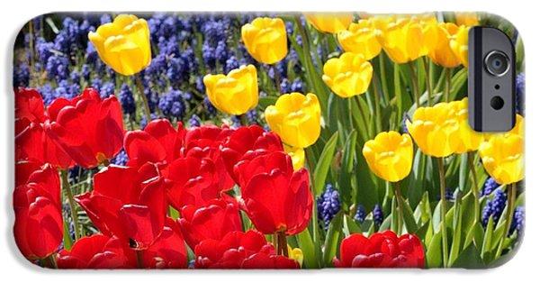 Spring Sunshine IPhone 6s Case