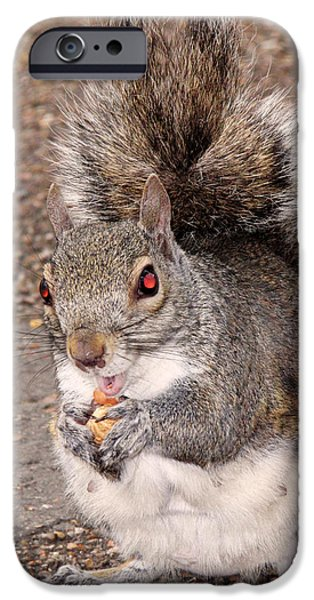 Squirrel Possessed IPhone 6s Case