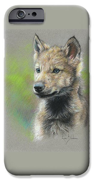 Wolf iPhone 6s Case - Study - Baby Wolf by Lucie Bilodeau