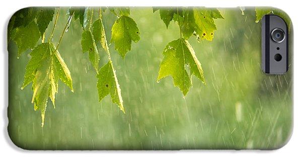 New Leaf iPhone 6s Case - Summer Shower by Diane Diederich