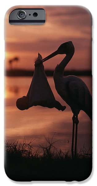 Sunrise Silhouette Of Stork Carrying IPhone 6s Case