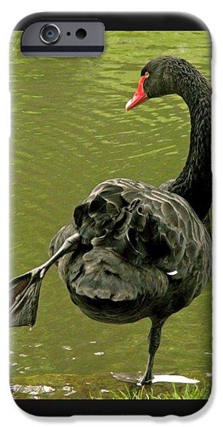 Swan Yoga IPhone 6s Case