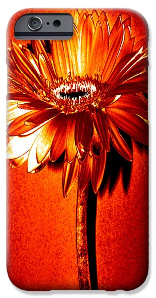 Tequila Sunrise Zinnia IPhone 6s Case by Sherry Allen