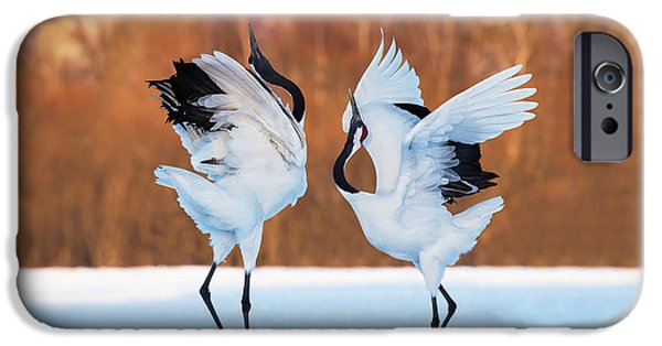 The Dance Of Love IPhone 6s Case by C. Mei
