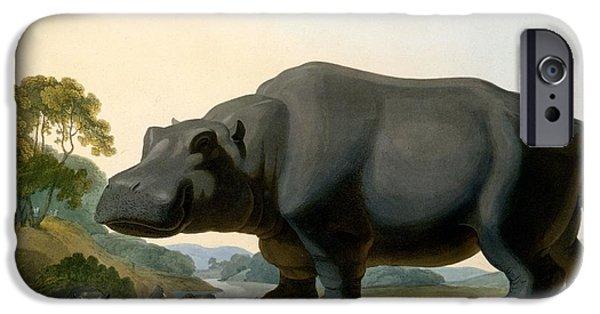 The Hippopotamus, 1804 IPhone 6s Case by Samuel Daniell