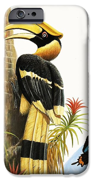 Toucan iPhone 6s Case - The Hornbill by RB Davis