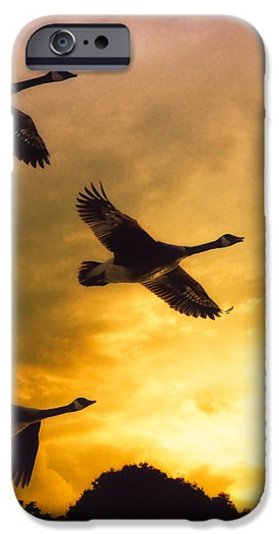 Geese iPhone 6s Case - The Journey South by Bob Orsillo