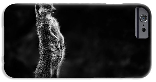 The Meerkat IPhone 6s Case