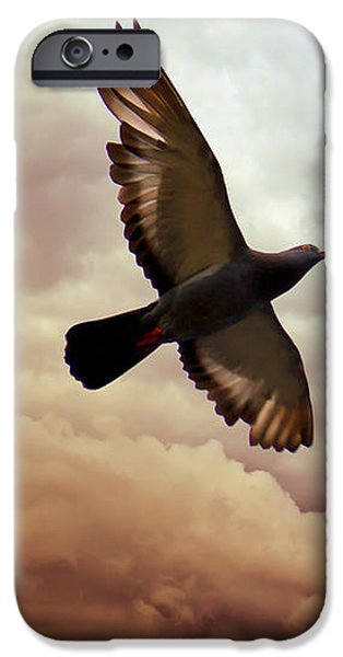 Pigeon iPhone 6s Case - The Pigeon by Bob Orsillo