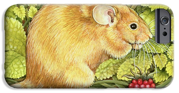The Raspberry Mouse IPhone 6s Case by Ditz