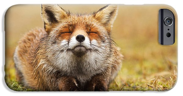Animals iPhone 6s Case - The Smiling Fox by Roeselien Raimond