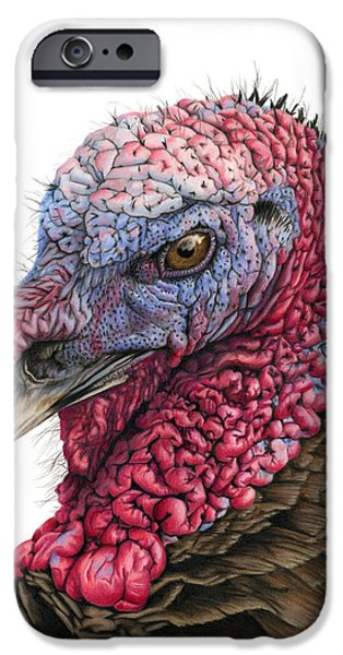 The Turkey IPhone 6s Case by Sarah Batalka