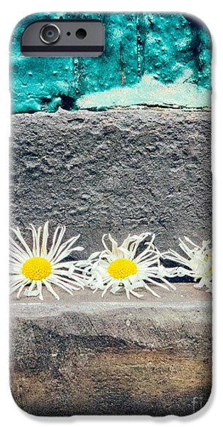 IPhone 6s Case featuring the photograph Three Daisies Stuck In A Door by Silvia Ganora