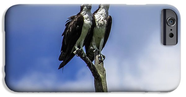 Together Again IPhone 6s Case