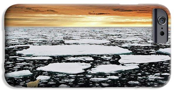 Polar Bear iPhone 6s Case - Towards An Uncertain Future... by Marco Gaiotti