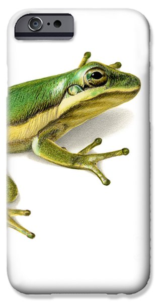 Green Tree Frog IPhone 6s Case