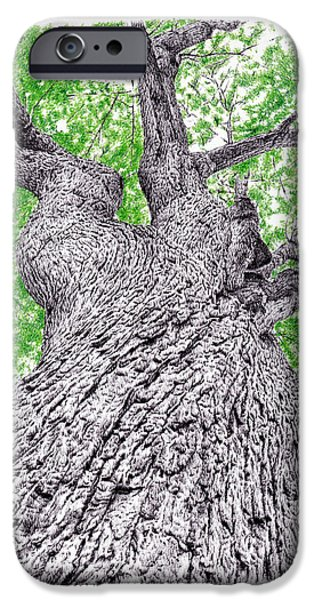 Tree Pen Drawing 4 IPhone 6s Case