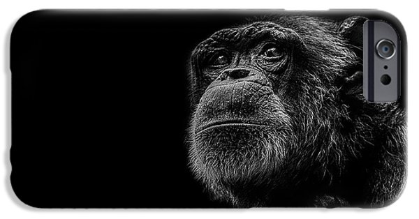 Chimpanzee iPhone 6s Case - Trepidation by Paul Neville