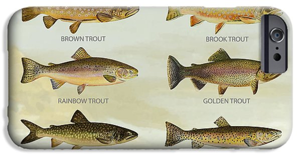 Trout Species IPhone 6s Case by Aged Pixel