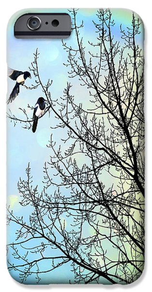 Magpies iPhone 6s Case - Two For Joy by John Edwards