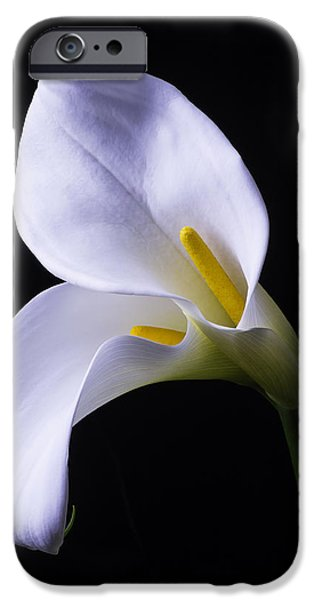 Lily iPhone 6s Case - Two In Love by Garry Gay